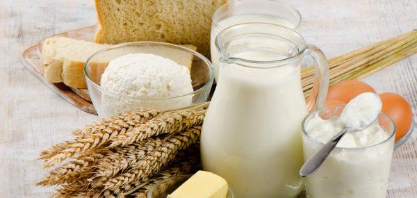 С закваской Vivo можно приготовить любые молочные продукты